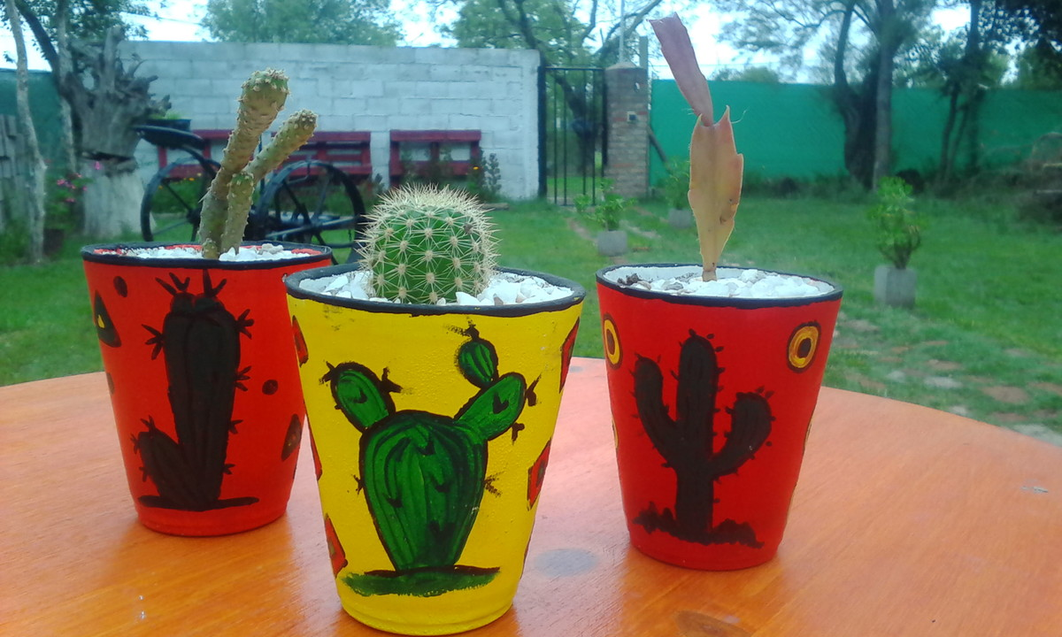 Cactus con macetas decoradas guaycu elo7 for Macetas decoradas para jardin